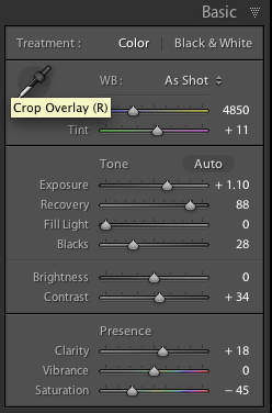 lightroom basic panel adjustments
