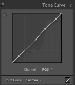 tone curve lightroom adjustments