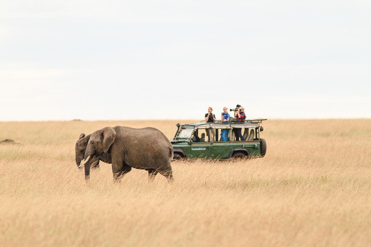 photographers on safari in Kenya